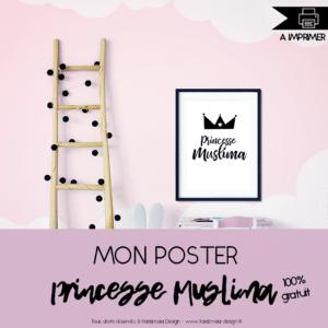 Poster Princesse Muslima