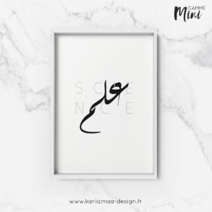 Poster Science en Arabe Gamme Mini