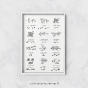 Poster Les Epices en Arabe et Les Herbes Aromatiques en Arabe